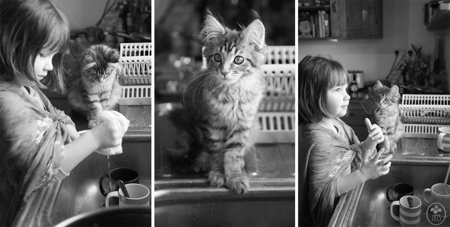 gatto-terapia-autismo-bambina-iris-grace-05