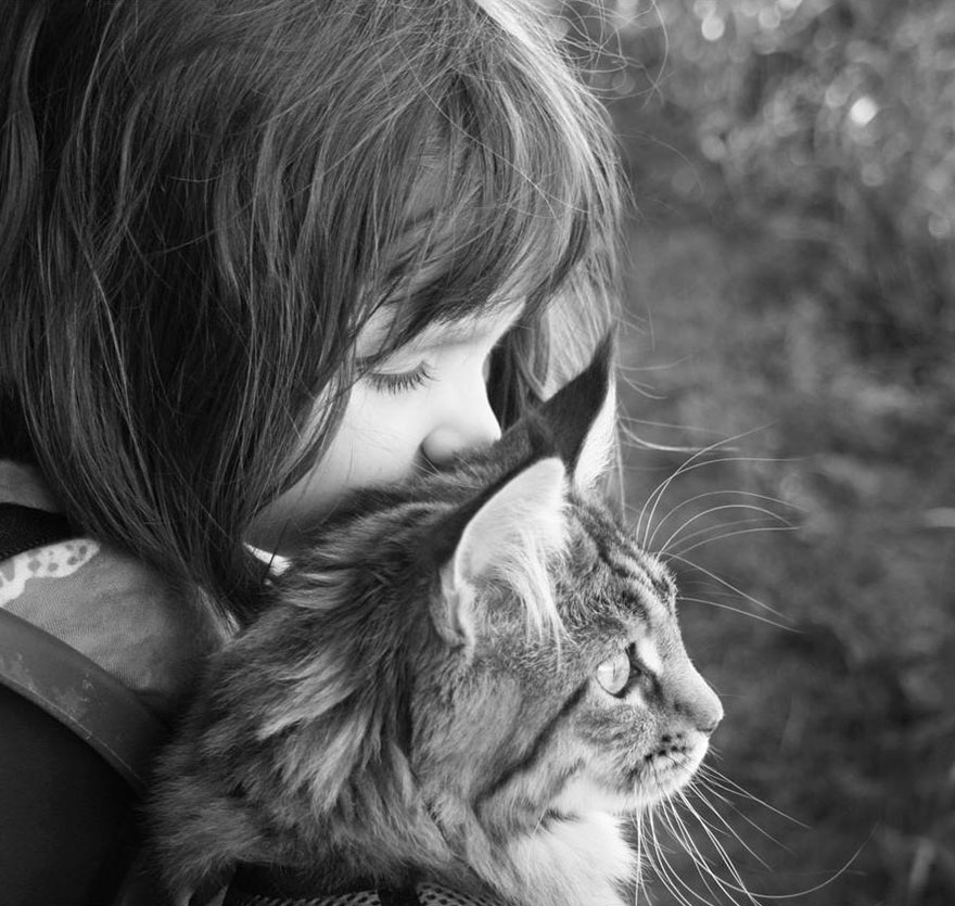 gatto-terapia-autismo-bambina-iris-grace-08