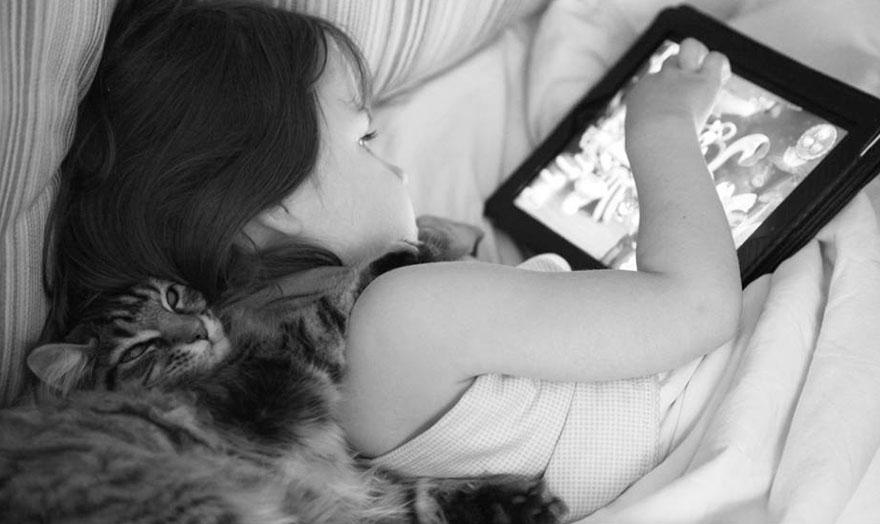 gatto-terapia-autismo-bambina-iris-grace-10