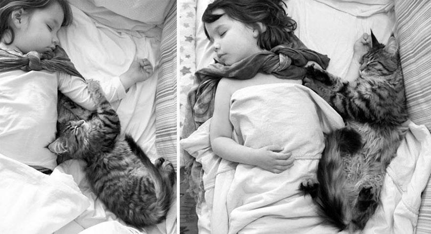 gatto-terapia-autismo-bambina-iris-grace-12