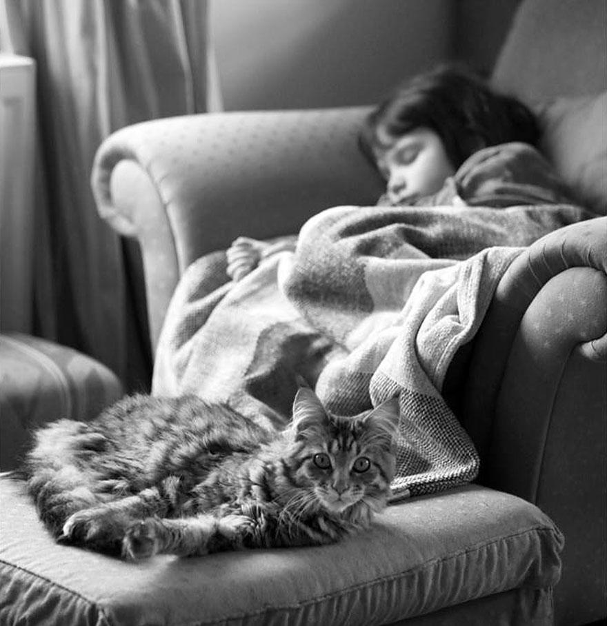 gatto-terapia-autismo-bambina-iris-grace-14