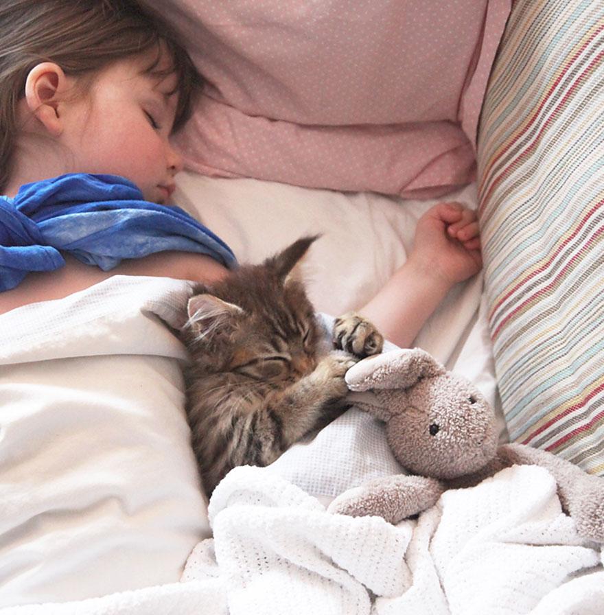 gatto-terapia-autismo-bambina-iris-grace-16
