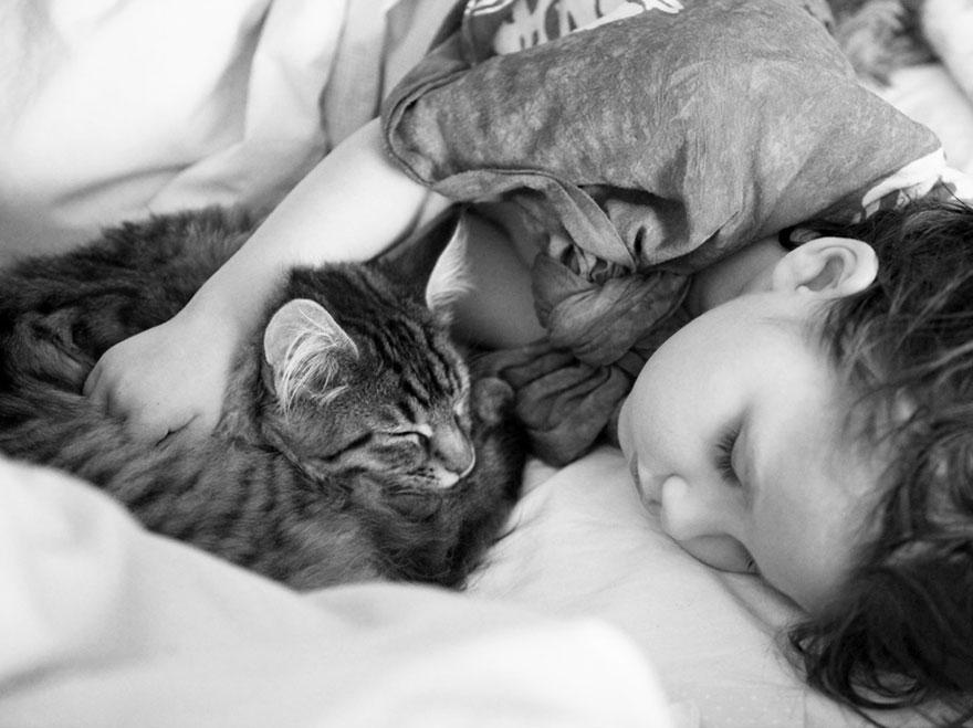 gatto-terapia-autismo-bambina-iris-grace-18