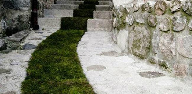 jaujac-tappeto-erba-verde-francia-6
