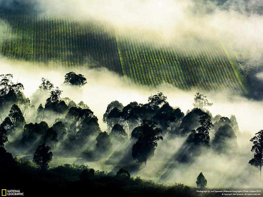 national-geographic-photo-contest-2014-foto-natura-concorso-02