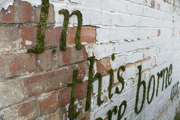 street-art-graffiti-murali-muschio-01