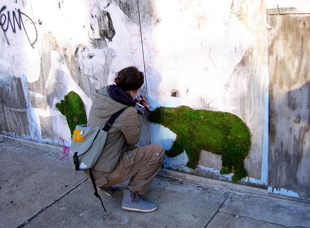street-art-graffiti-murali-muschio-02