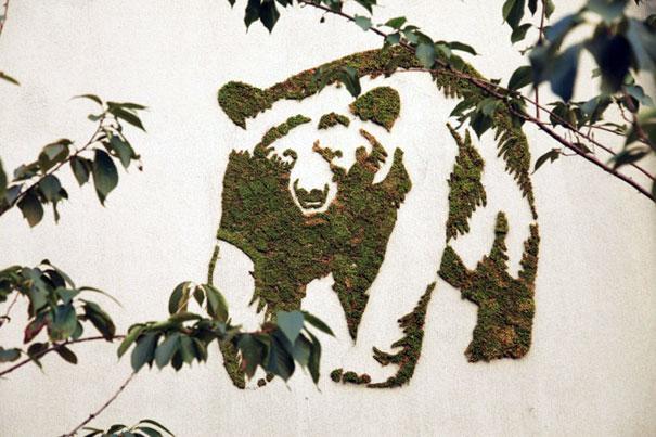 street-art-graffiti-murali-muschio-04