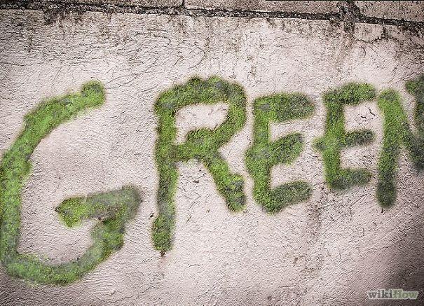 street-art-graffiti-murali-muschio-12