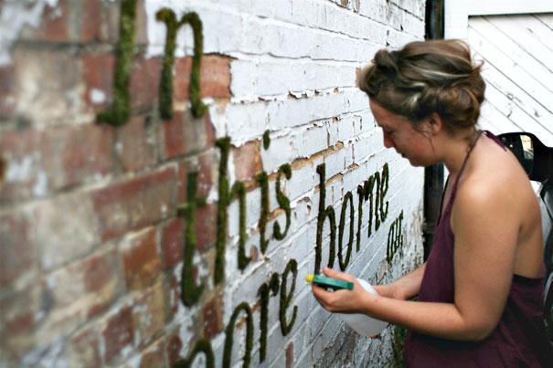 street-art-graffiti-murali-muschio-21
