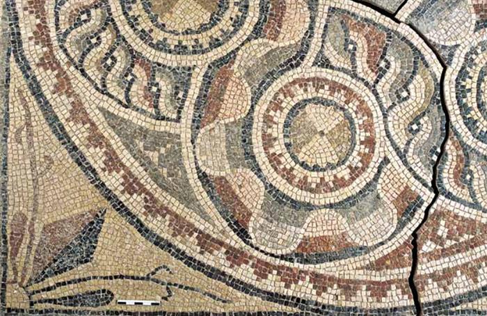 antico-mosaico-antico-scavi-archeologici-turchia-zeugma-03
