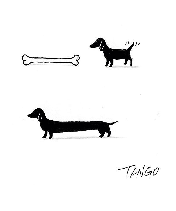 divertenti-fumetti-illustrazioni-animali-shanghai-tango-06