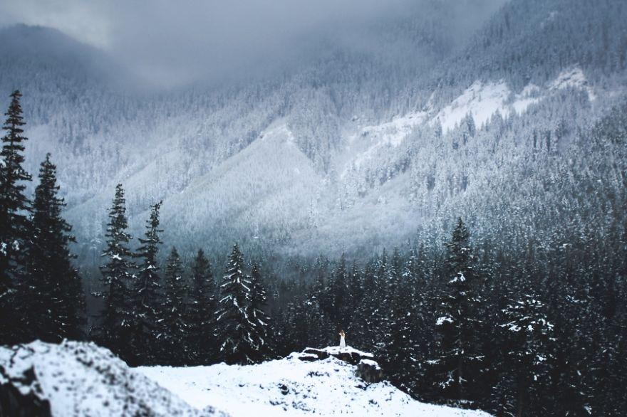 fotografa-canadese-paesaggi-natura-mistici-elisabeth-gadd-05