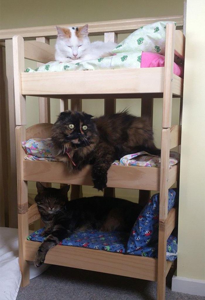 lettino bambole ikea per gatti-04