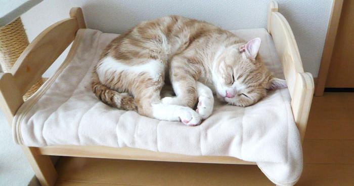 Mobili Per Bambole Ikea : Lettino bambole ikea per gatti in giappone