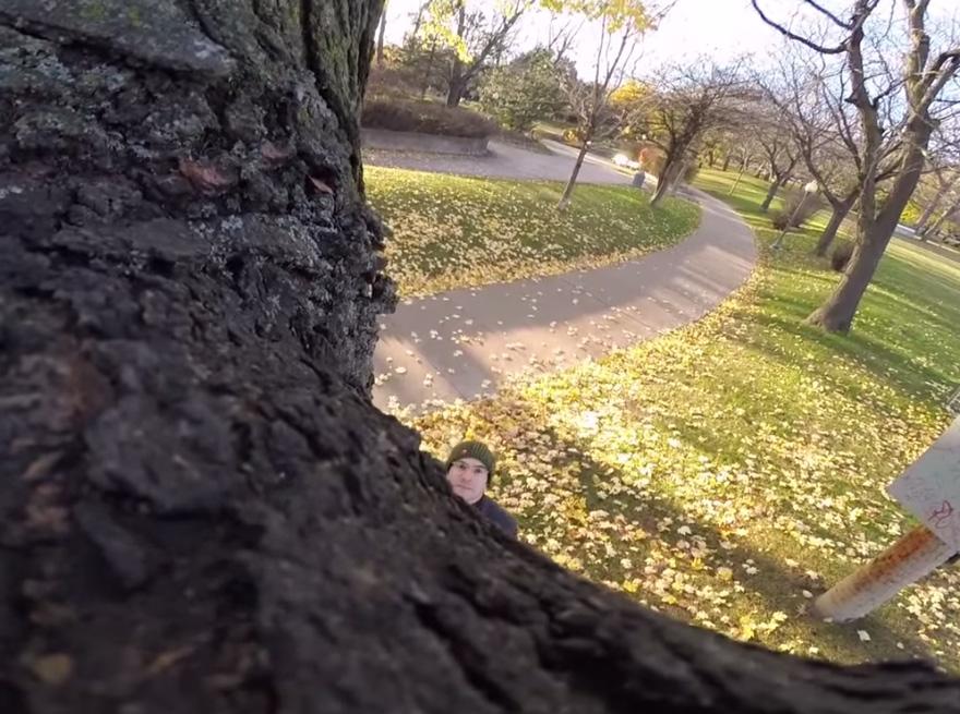scoiattolo-ruba-videocamera-gopro-3