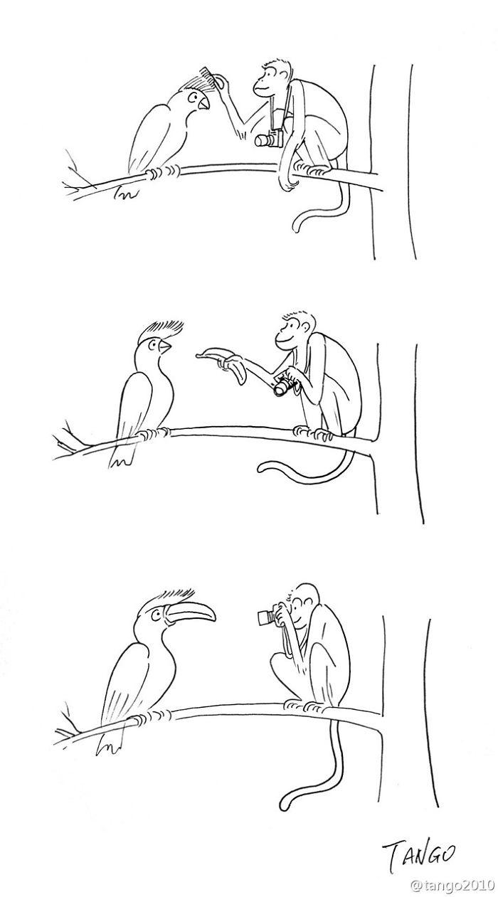 shanghai-tango-fumetti-illustrazioni-divertenti-14