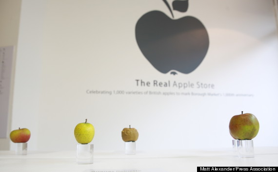 the-real-apple-store-vere-mele-6
