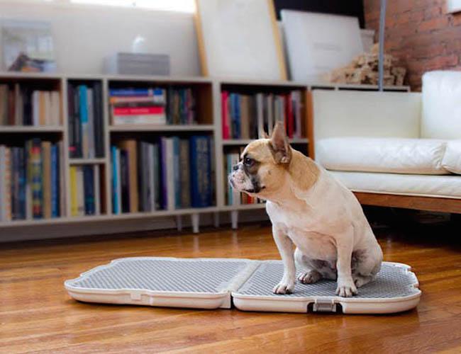 vasino-lettiera-per-cani-the-shake-dog-potty1