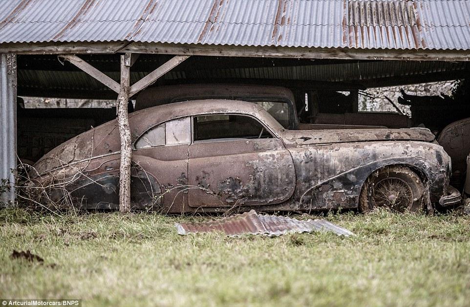 60 auto d 39 epoca trovate dopo 50 anni di abbandono in una fattoria in francia valgono 15 milioni. Black Bedroom Furniture Sets. Home Design Ideas