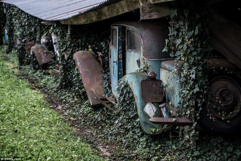 60-automobili-epoca-vintage-abbandonate-14