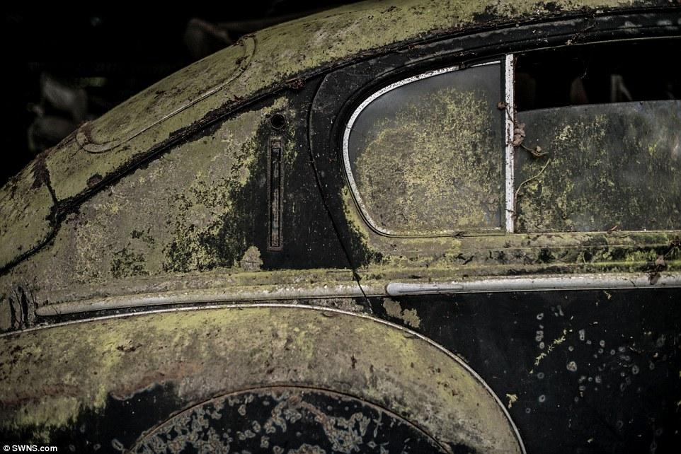 60-automobili-epoca-vintage-abbandonate-15