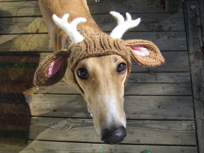 cappelli-invernali-creativi-maglia-09