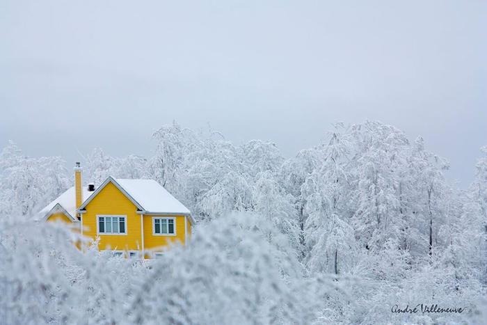 20 case solitarie nel mezzo di maestosi paesaggi invernali