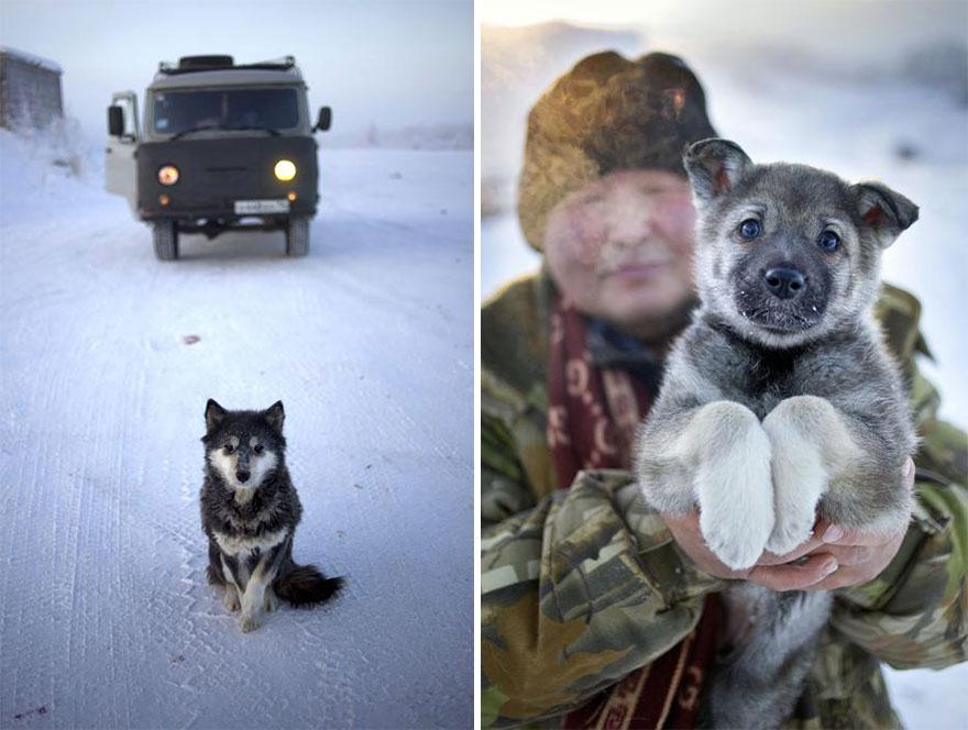 il-paese-più-freddo-del-mondo-ojmjakon-russia-11