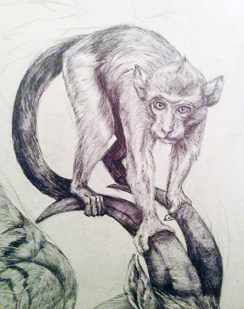 oroscopo-cinese-animali-disegno-casterlyrock-Savannah-Burgess-02