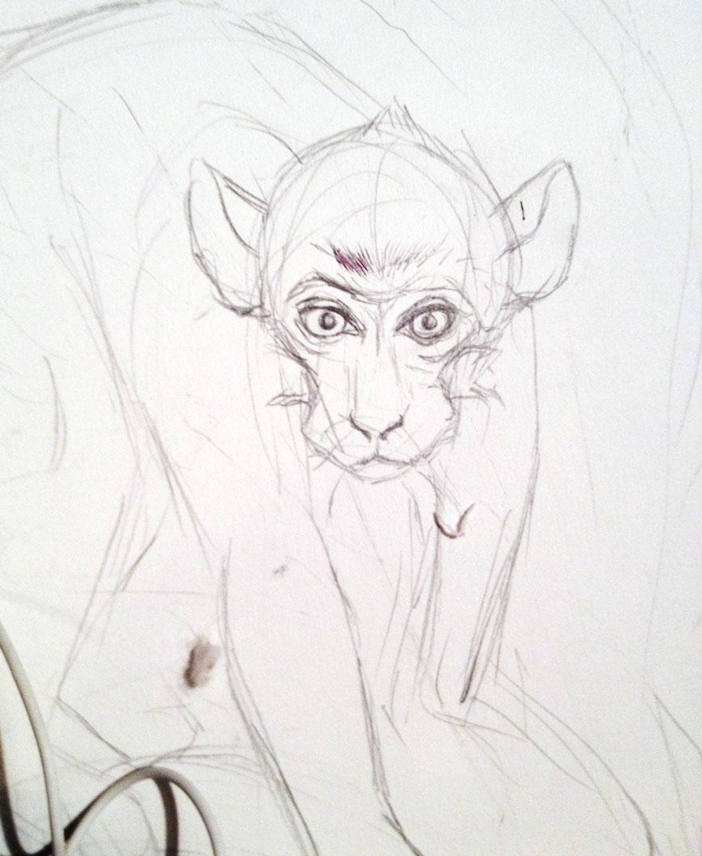 oroscopo-cinese-animali-disegno-casterlyrock-Savannah-Burgess-04