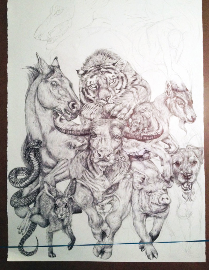 oroscopo-cinese-animali-disegno-casterlyrock-Savannah-Burgess-05