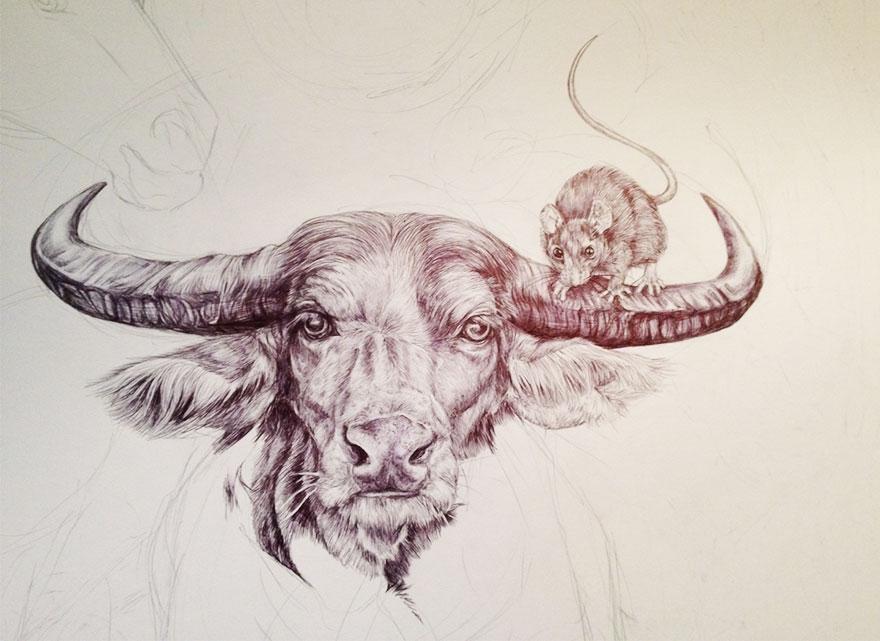 oroscopo-cinese-animali-disegno-casterlyrock-Savannah-Burgess-10