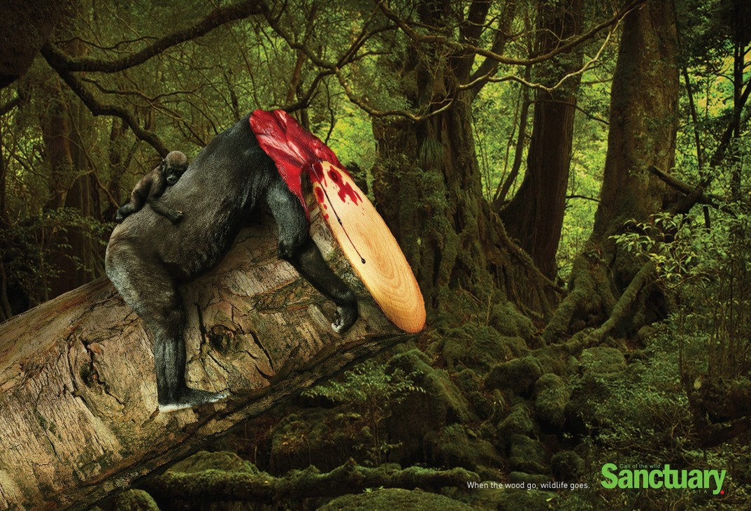 pubblicità-deforestazione-animali-sanctuary-asia-adeeve-2