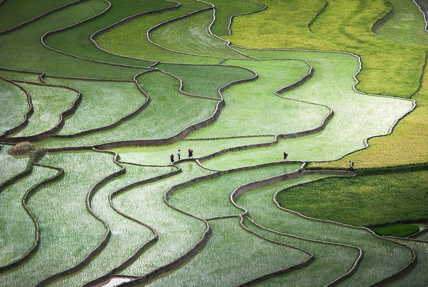 terrazze-campi-di-riso-03