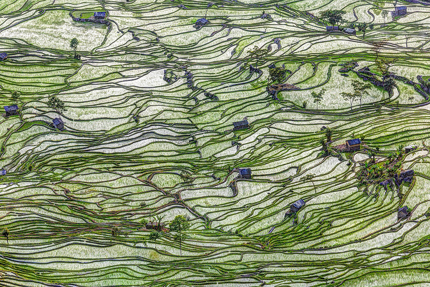 terrazze-campi-di-riso-07