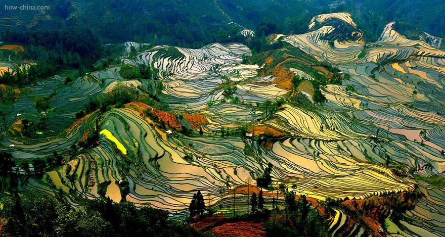 terrazze-campi-di-riso-11