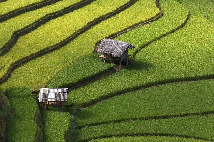 terrazze-campi-di-riso-12