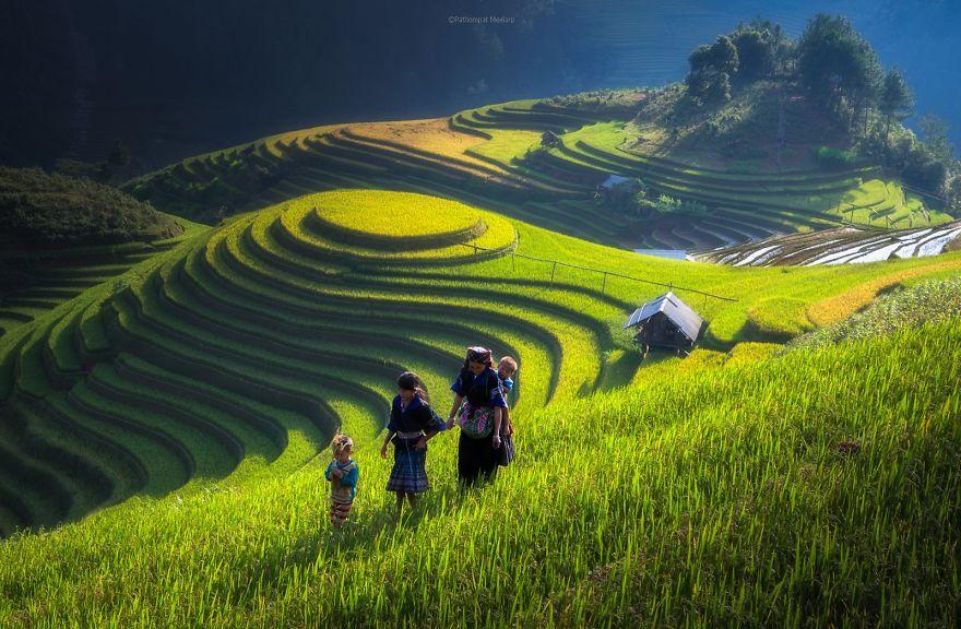 terrazze-campi-di-riso-13