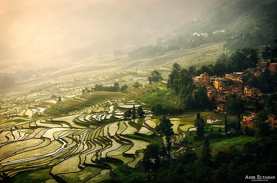 terrazze-campi-di-riso-21