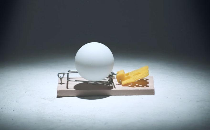 2015-palline-ping-pong-trappole-topi-video-pepsi-max-5