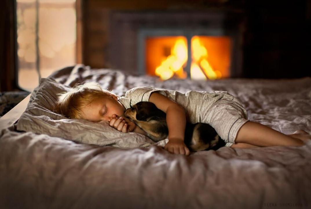 animali-bambini-fotografia-elena-shumilova-02