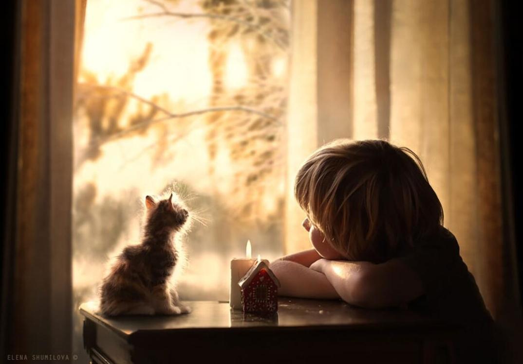 animali-bambini-fotografia-elena-shumilova-07