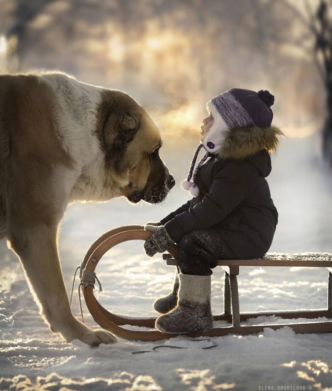animali-bambini-fotografia-elena-shumilova-09