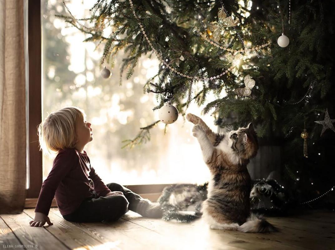 animali-bambini-fotografia-elena-shumilova-11