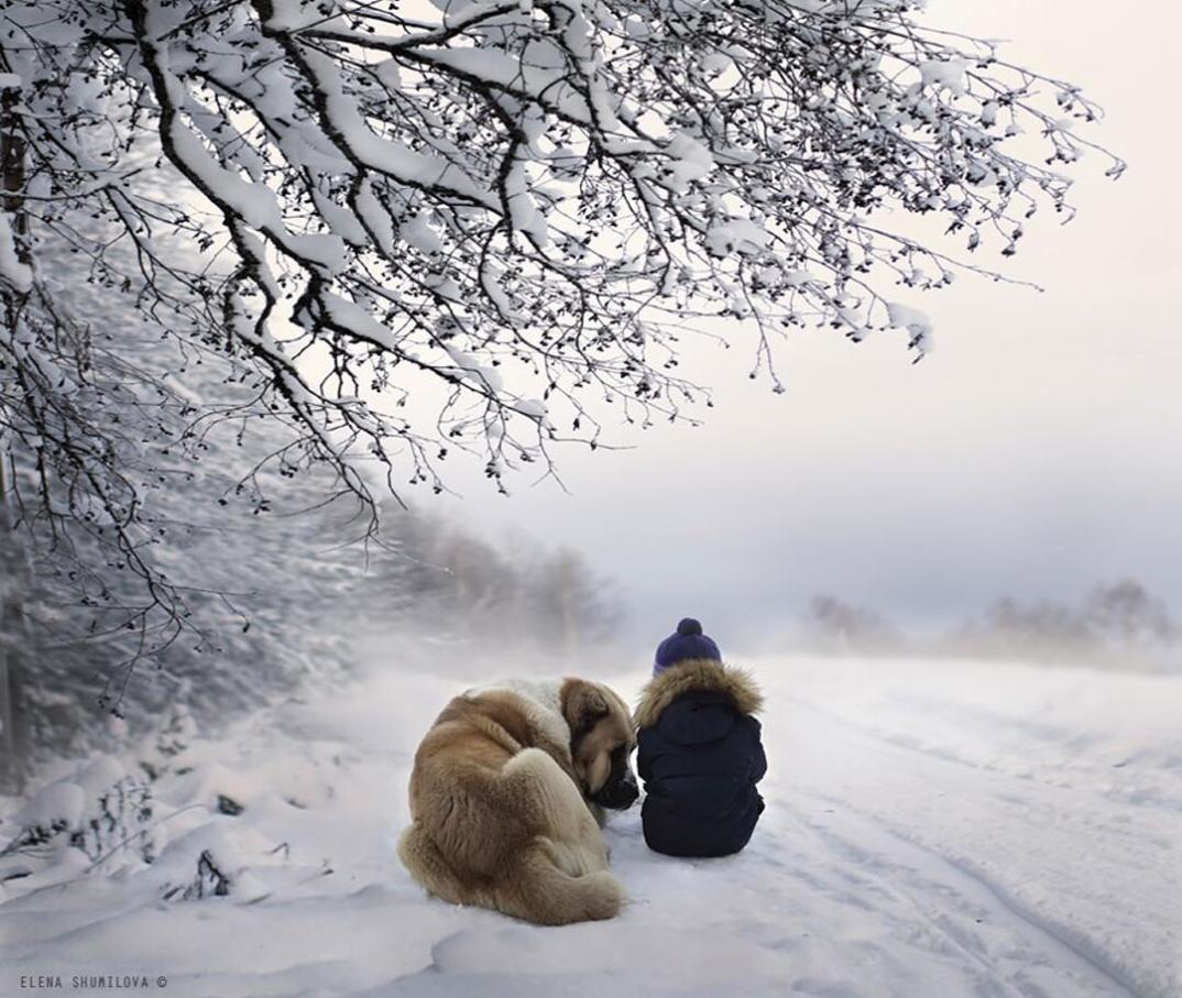 animali-bambini-fotografia-elena-shumilova-12