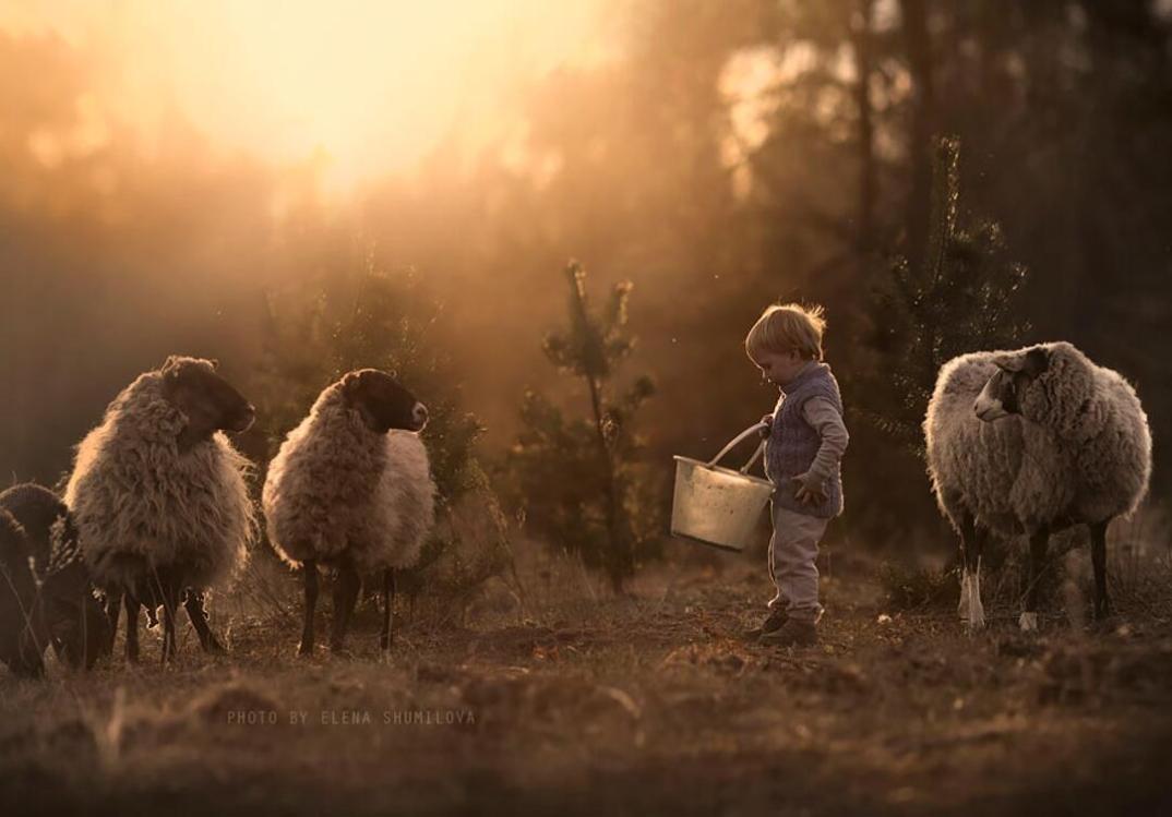 animali-bambini-fotografia-elena-shumilova-15