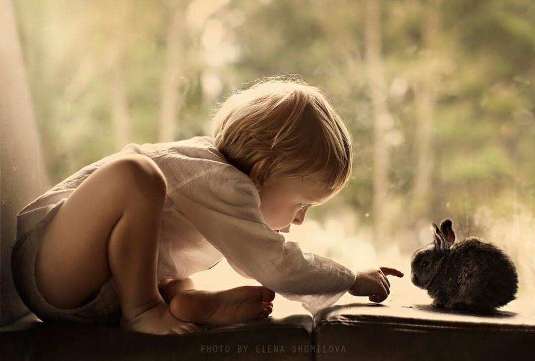 animali-bambini-fotografia-elena-shumilova-16