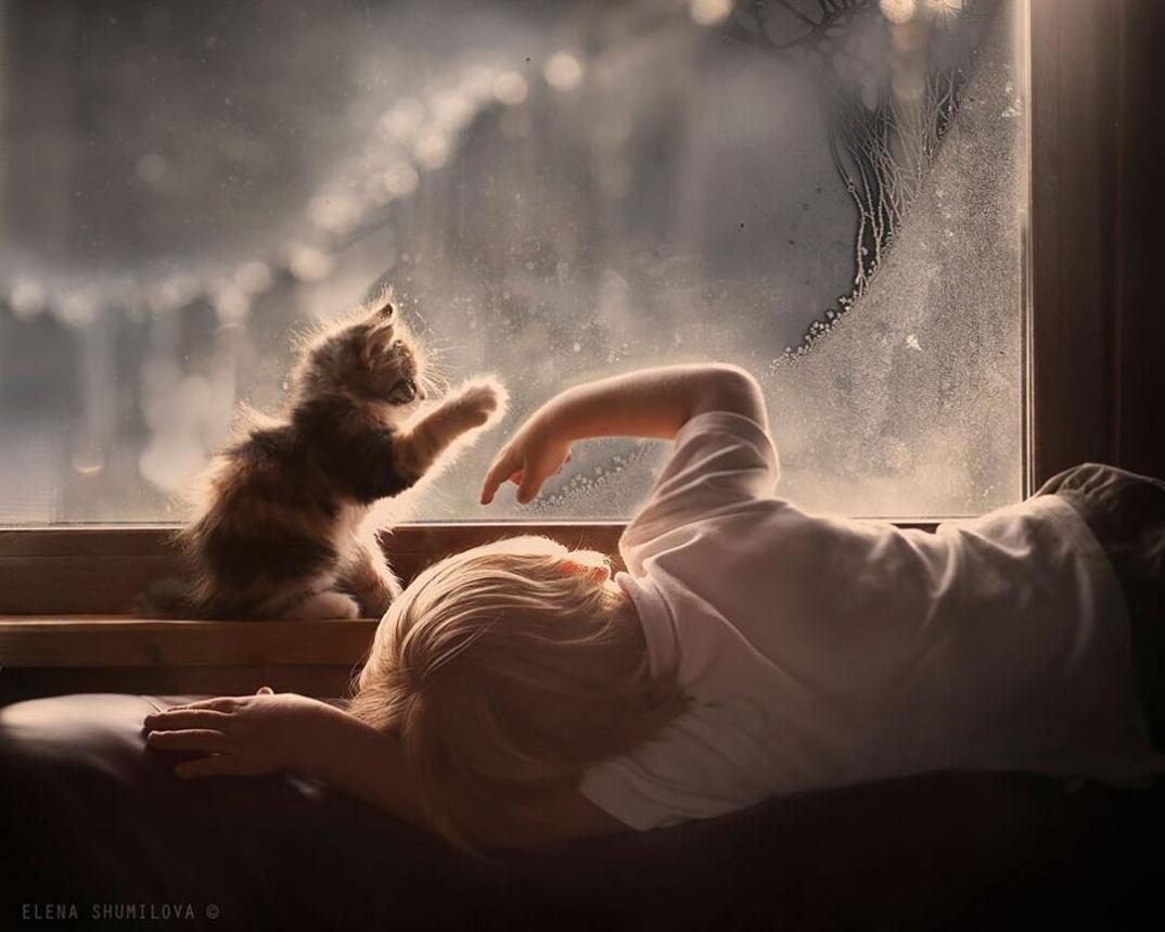 animali-bambini-fotografia-elena-shumilova-24