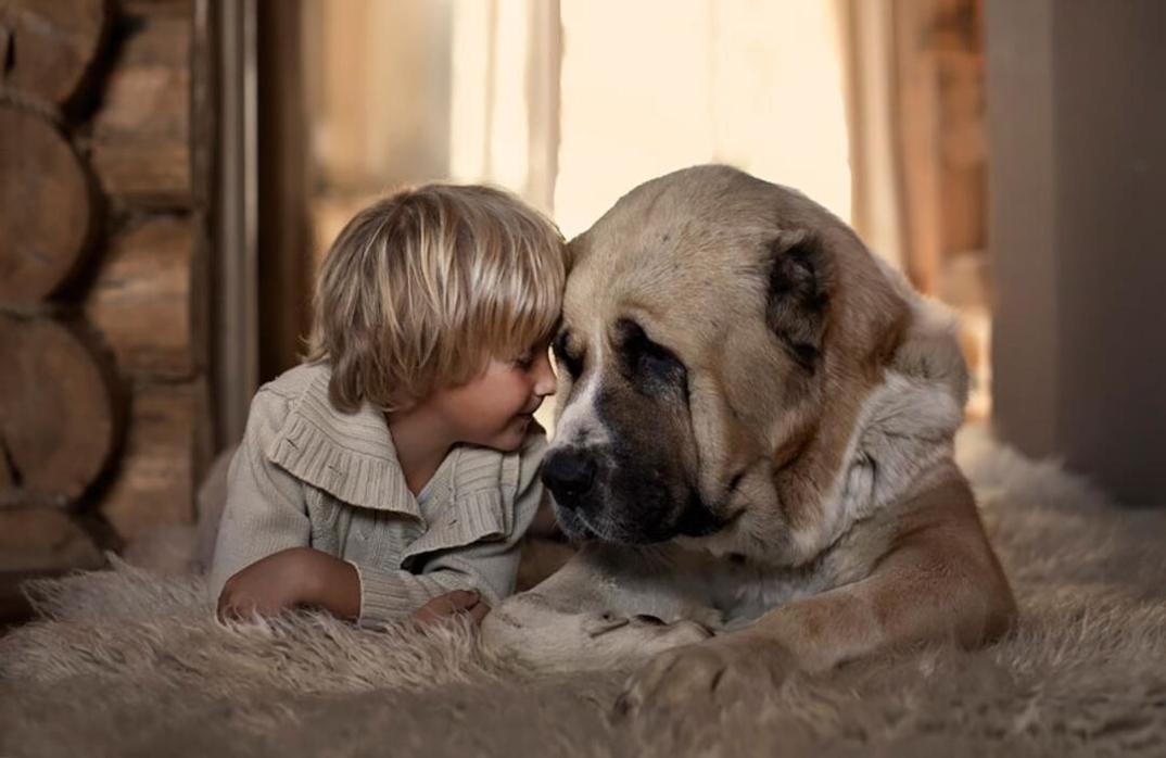 animali-bambini-fotografia-elena-shumilova-25
